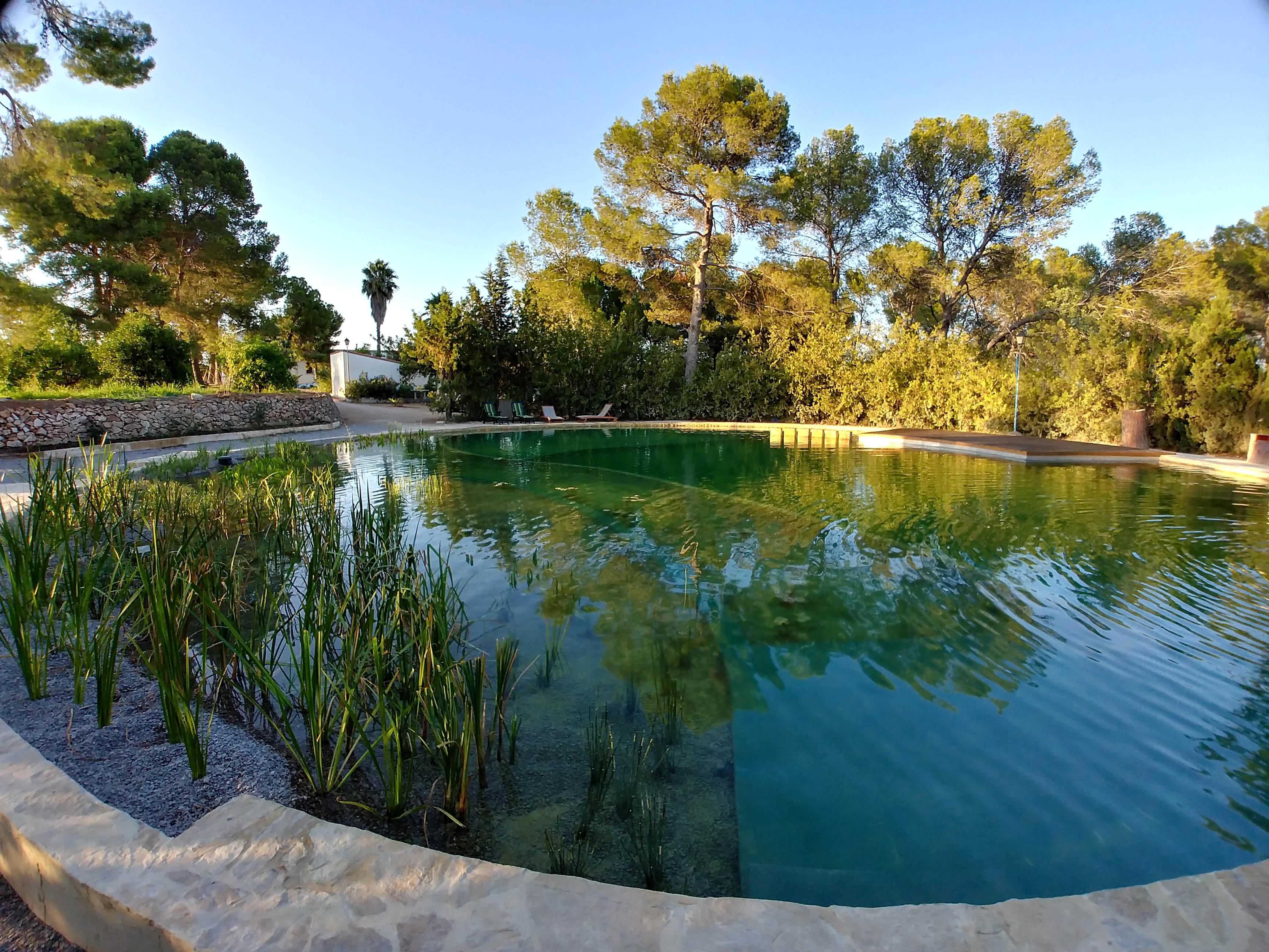 Transformer Son Bassin En Piscine la transformation du bassin d'irrigation à en piscine
